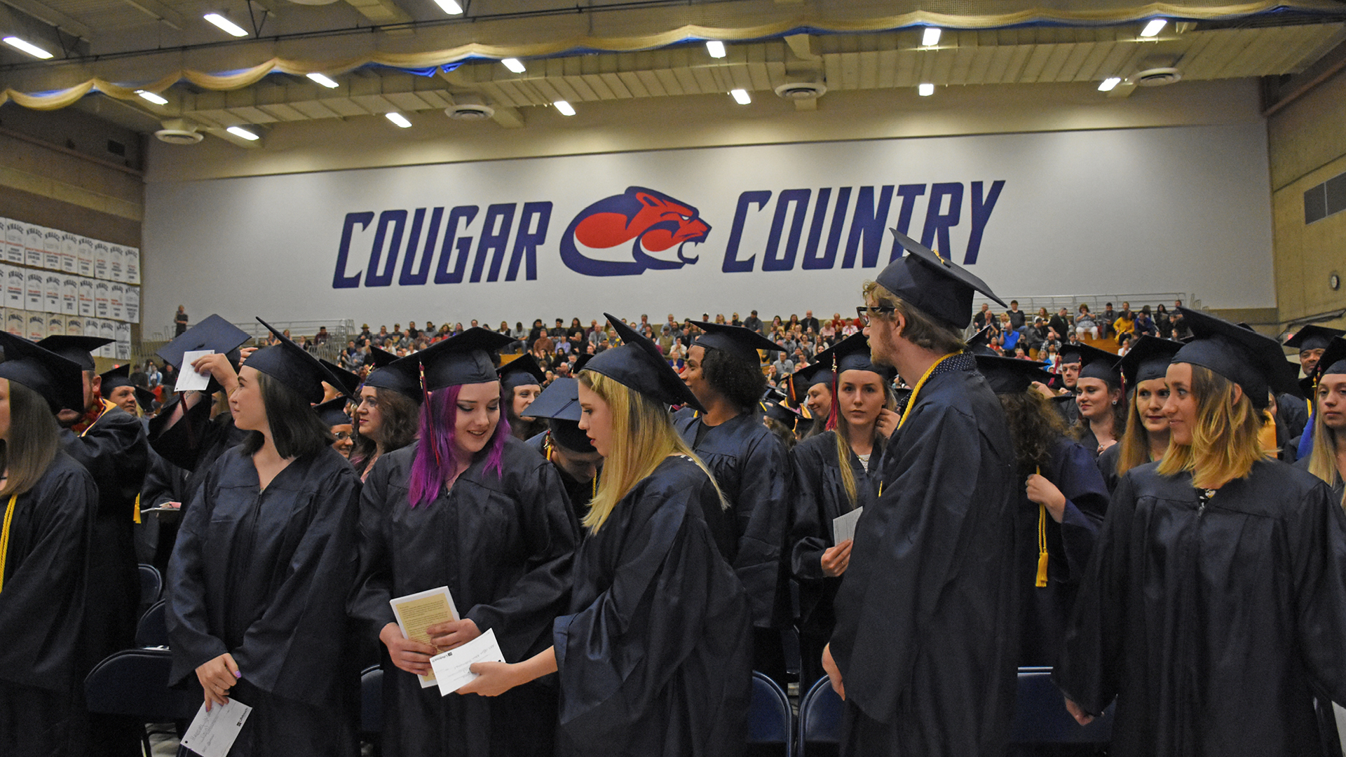 Zoom background of CCC graduates in the Randall gym with the Cougar Country banner in the background